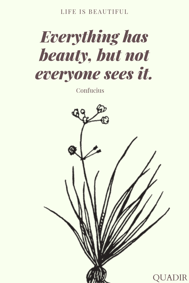 Everything has beauty, not everyone can…