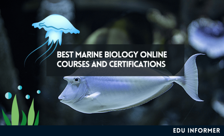10 Best Marine Biology Online Courses and Certifications